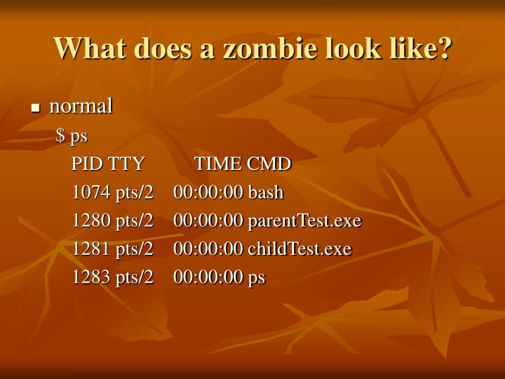 What does a zombie look like?