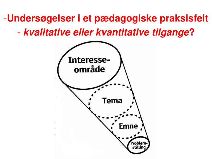 Undersøgelser i et pædagogiske praksisfelt