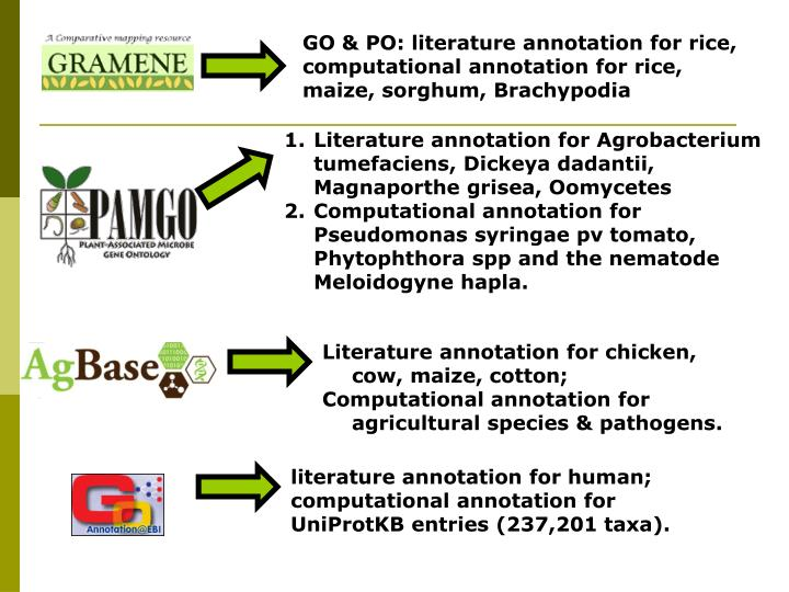 GO & PO: literature annotation for rice, computational annotation for rice, maize, sorghum, Brachypodia
