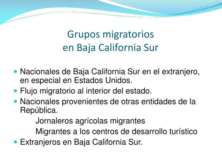Grupos migratorios