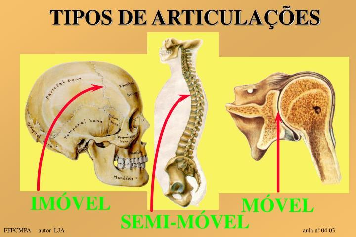 TIPOS DE ARTICULAÇÕES