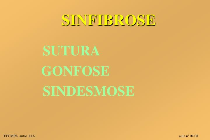 SINFIBROSE