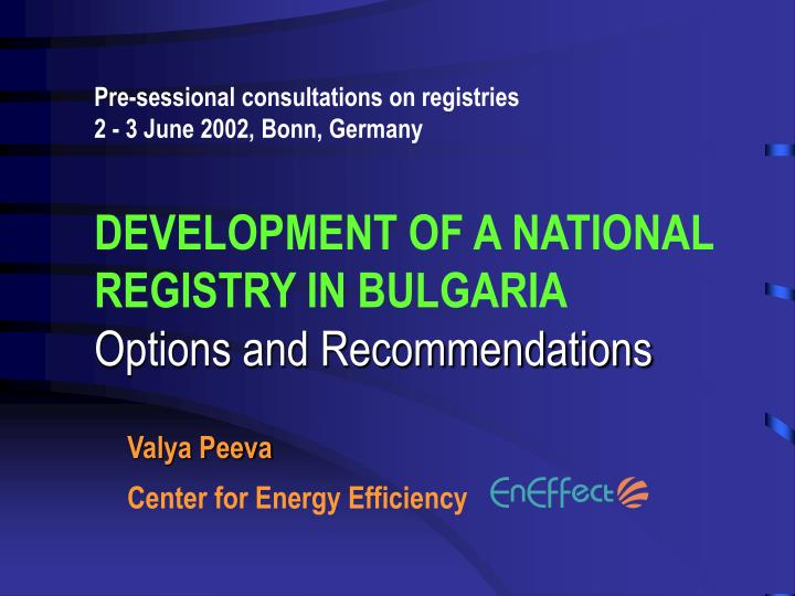 Pre-sessional consultations on registries