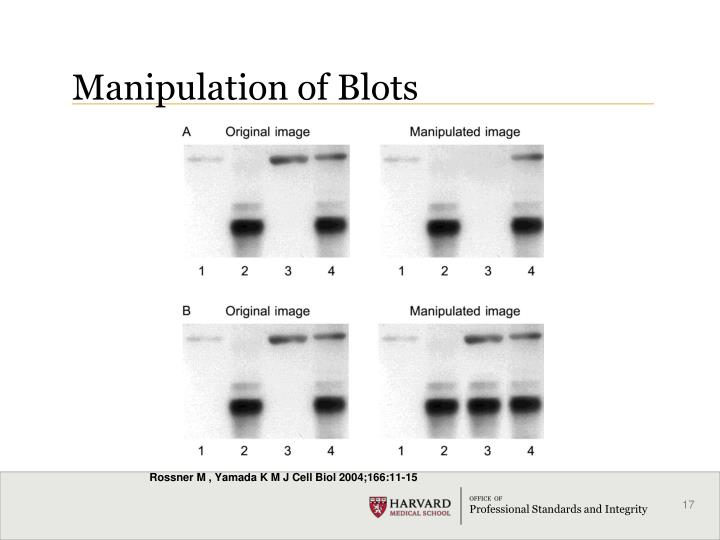 Manipulation of Blots