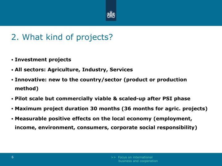 2. What kind of projects?