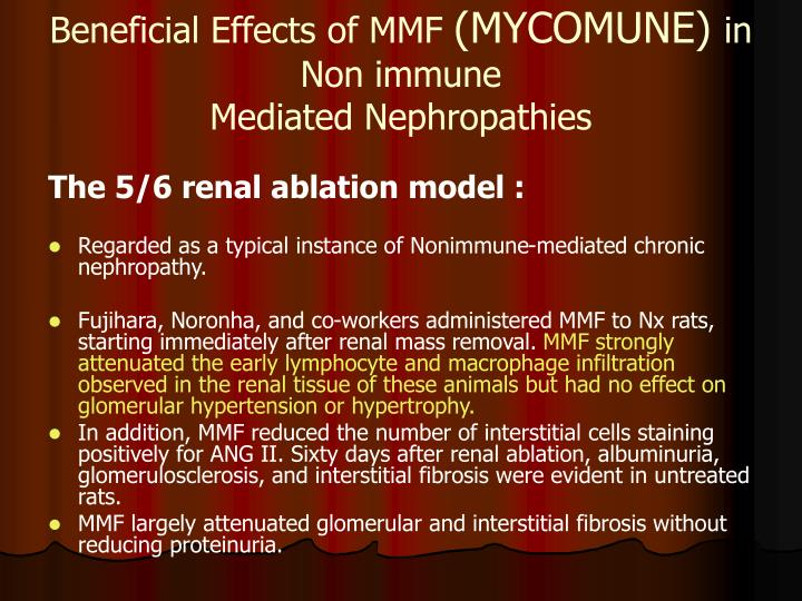 Beneficial Effects of MMF