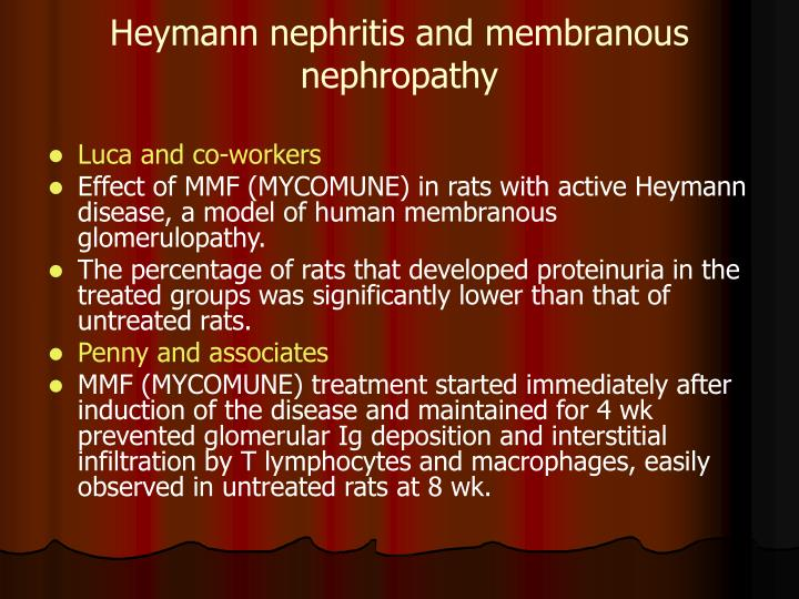 Heymann nephritis and membranous nephropathy