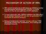 mechanism of action of mpa