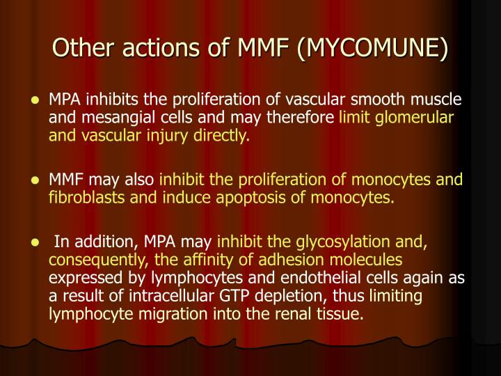 Other actions of MMF (MYCOMUNE)