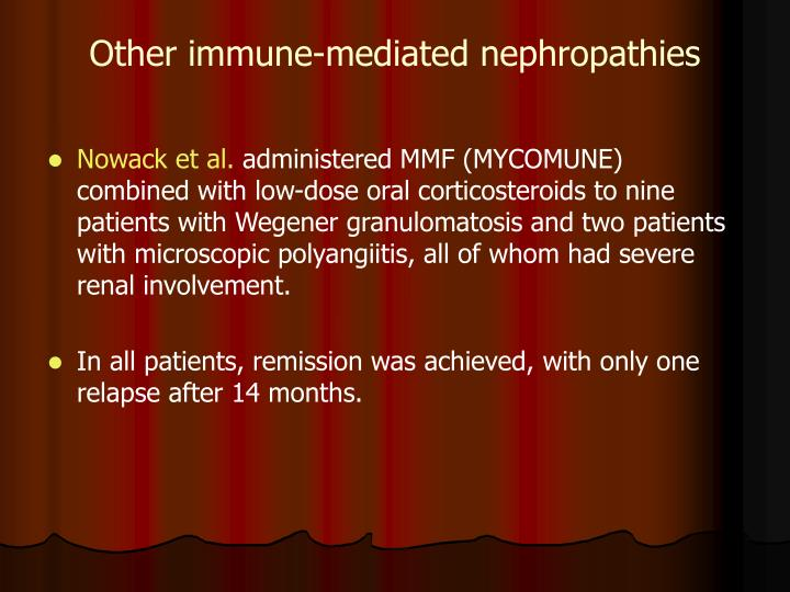 Other immune-mediated nephropathies