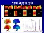 voxel specific head motion calculation