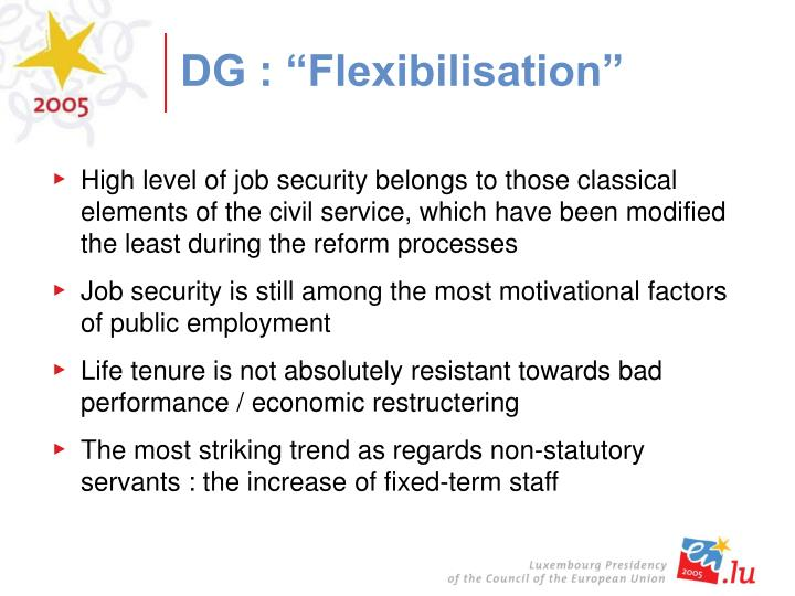 "DG : ""Flexibilisation"""