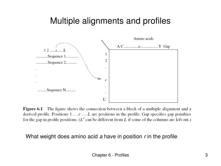 Multiple alignments and profiles