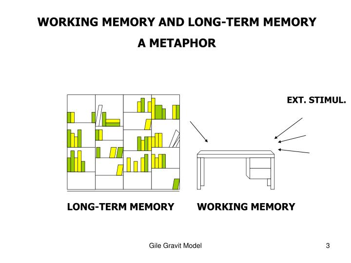 WORKING MEMORY AND LONG-TERM MEMORY
