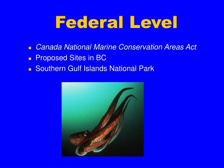 Federal Level