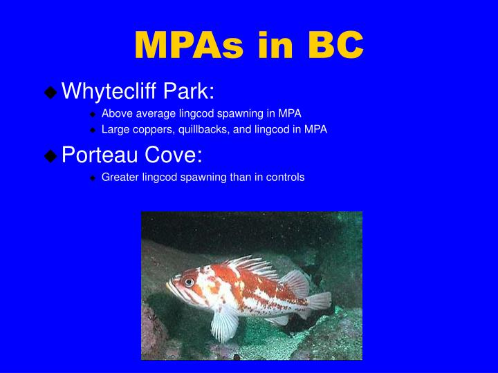 MPAs in BC