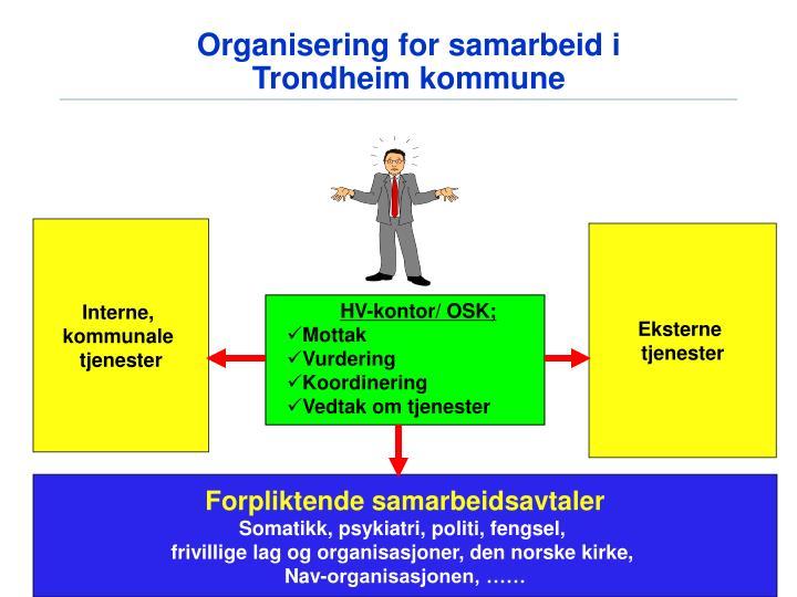 Organisering for samarbeid i Trondheim kommune