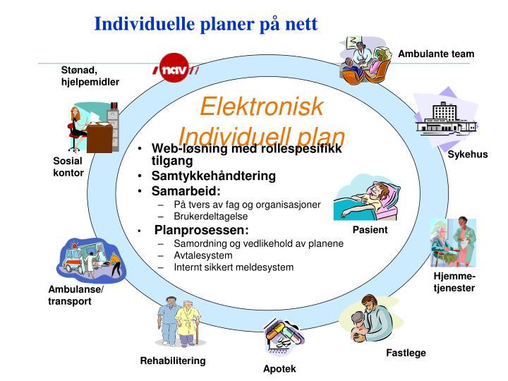 Individuelle planer på nett