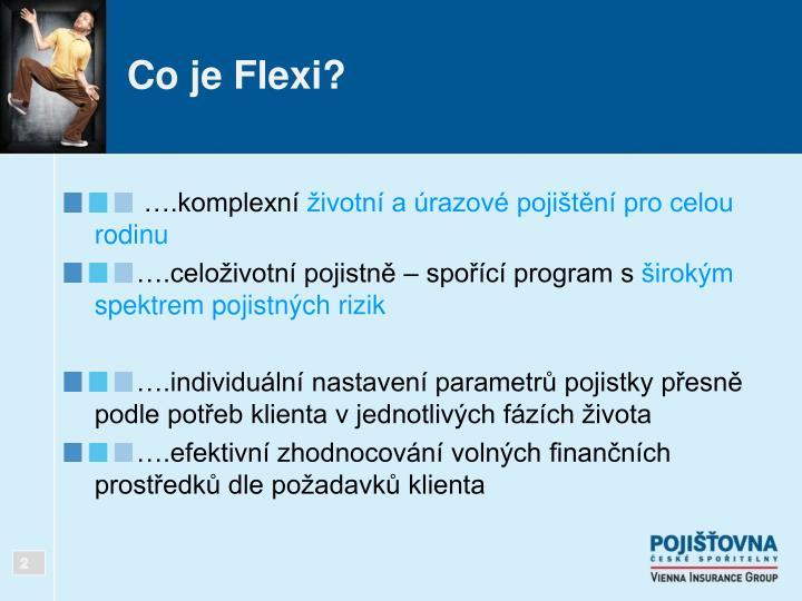 Co je Flexi?