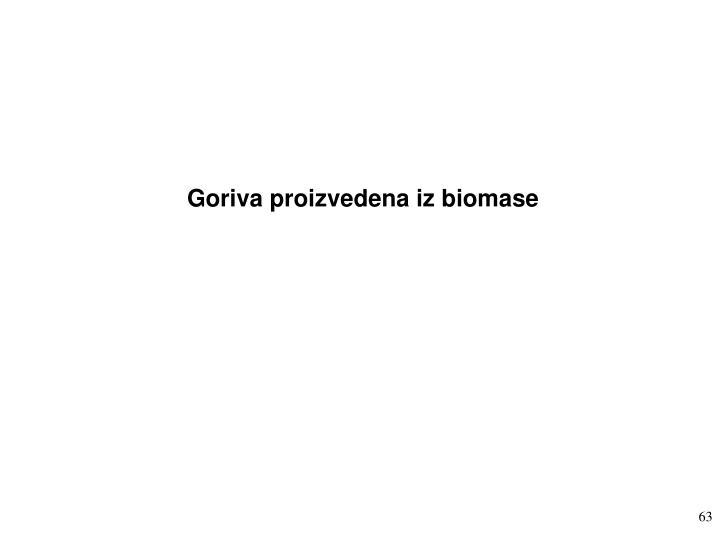 Goriva proizvedena iz biomase