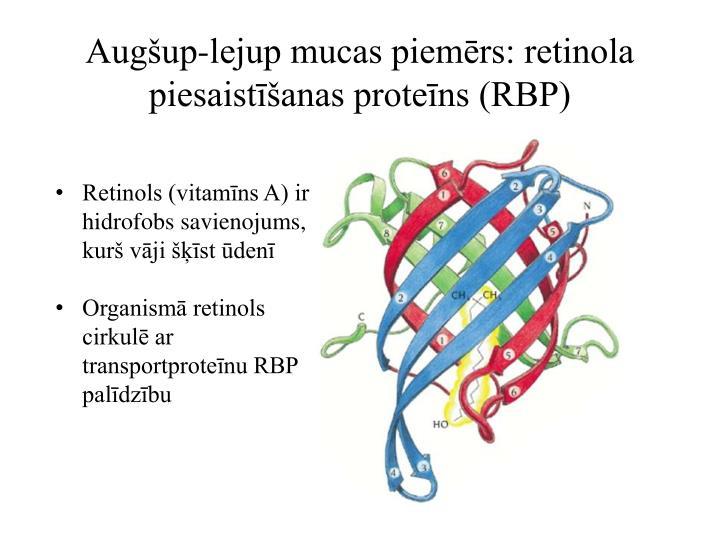 Augšup-lejup mucas piemērs: retinola piesaistīšanas proteīns (RBP)
