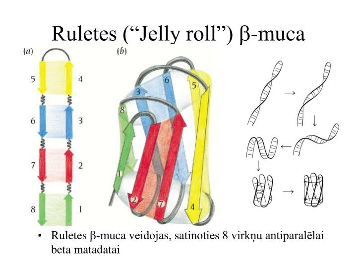 "Ruletes (""Jelly roll"")"