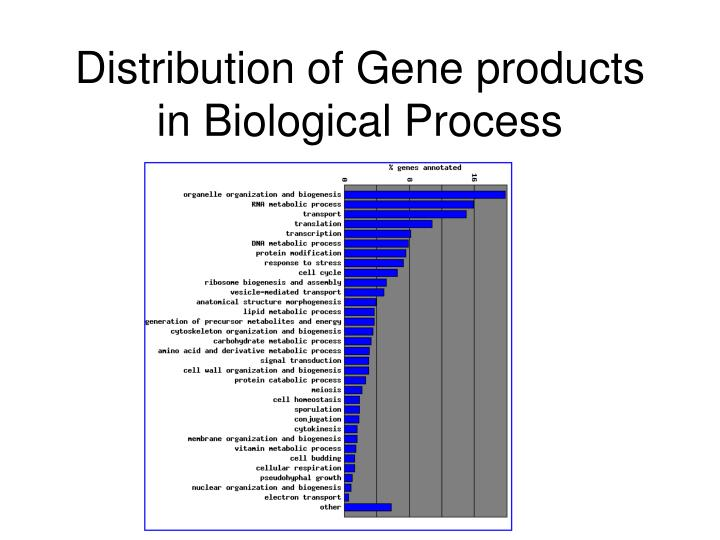 Distribution of Gene products in Biological Process
