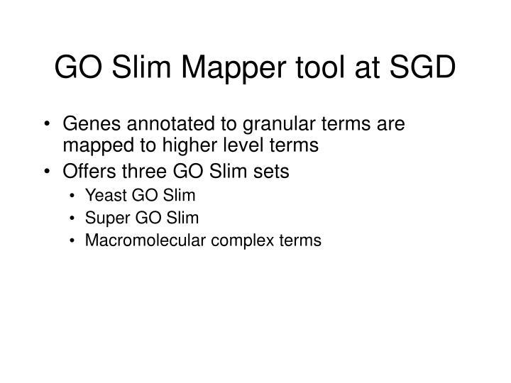 GO Slim Mapper tool at SGD