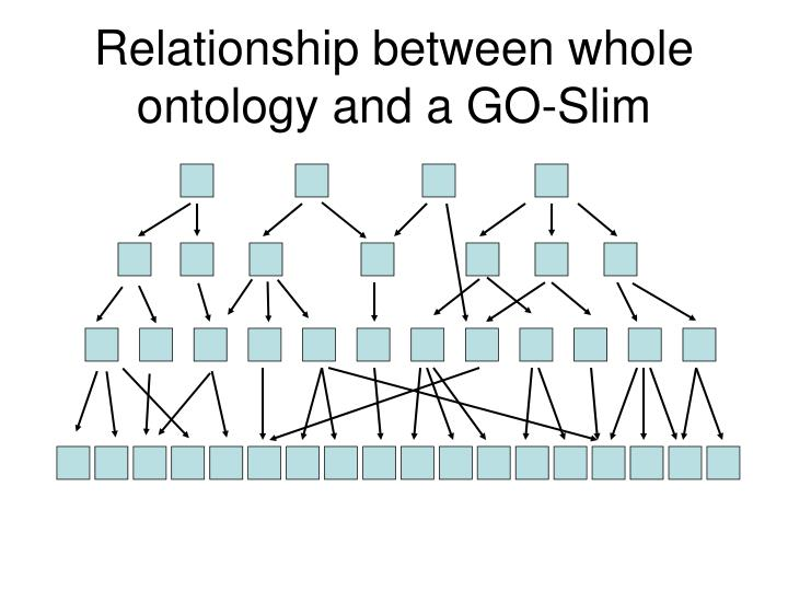 Relationship between whole ontology and a GO-Slim