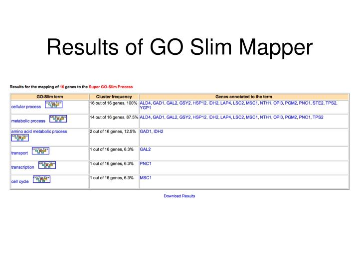 Results of GO Slim Mapper