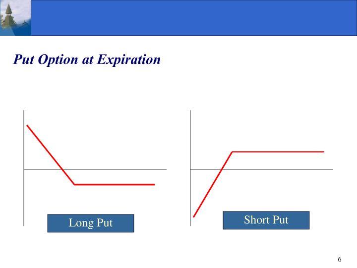 Put Option at Expiration