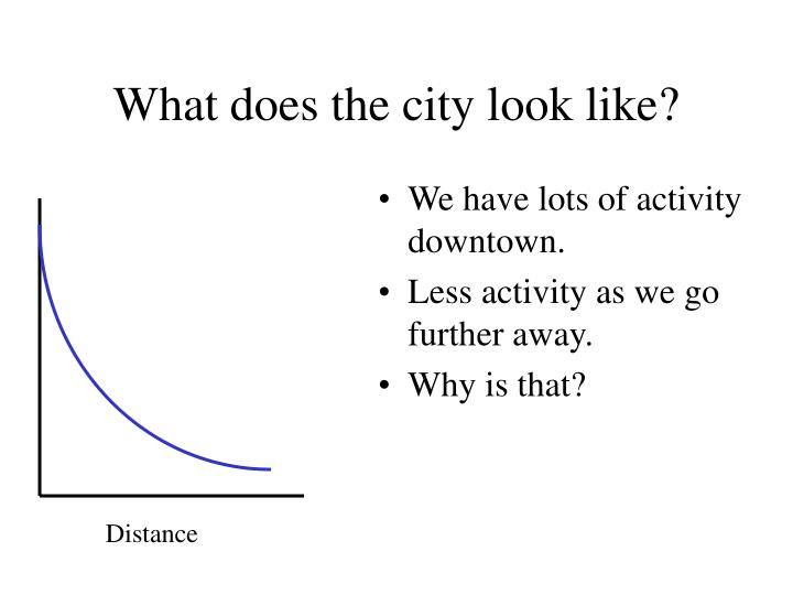 What does the city look like