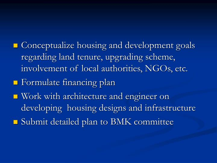 Conceptualize housing and development goals regarding land tenure, upgrading scheme, involvement of local authorities, NGOs, etc.