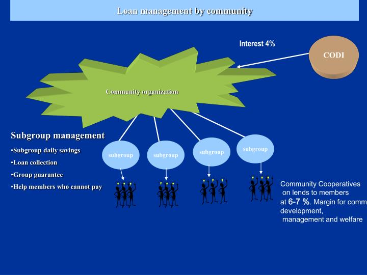 Loan management by community