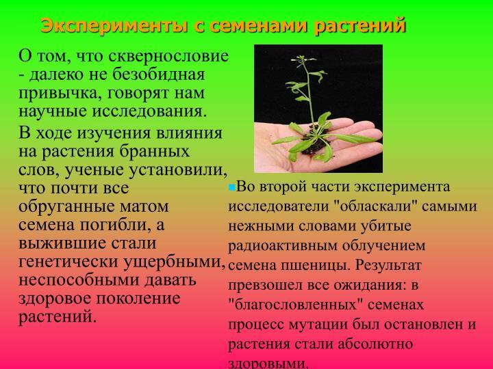 Эксперименты с семенами растений