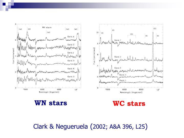 WN stars