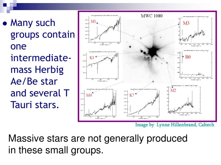 Many such groups contain one intermediate-mass Herbig Ae/Be star and several T Tauri stars.