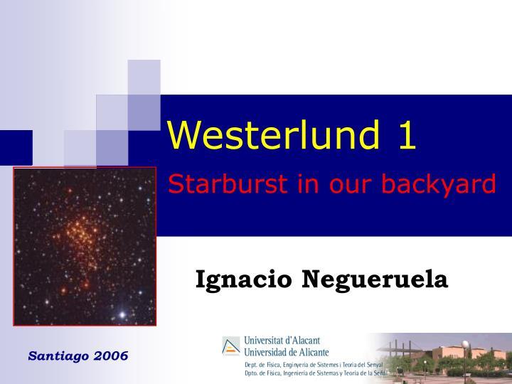 Westerlund 1