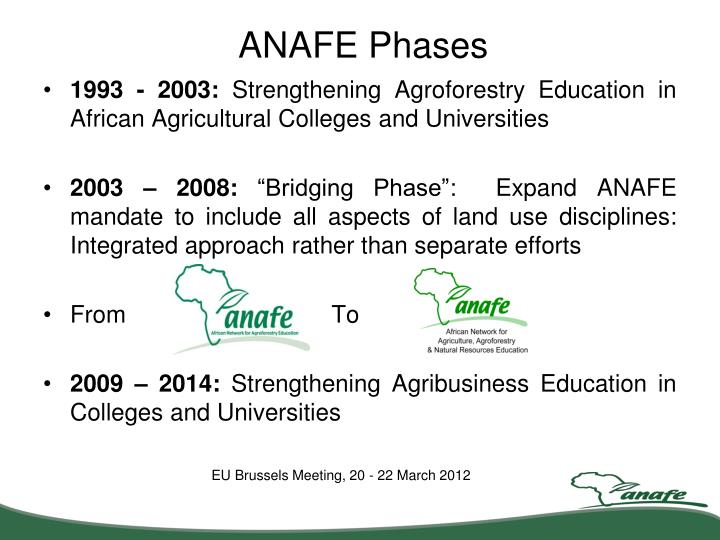 ANAFE Phases