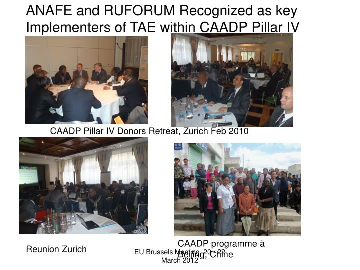 ANAFE and RUFORUM Recognized as key Implementers of TAE within CAADP Pillar IV