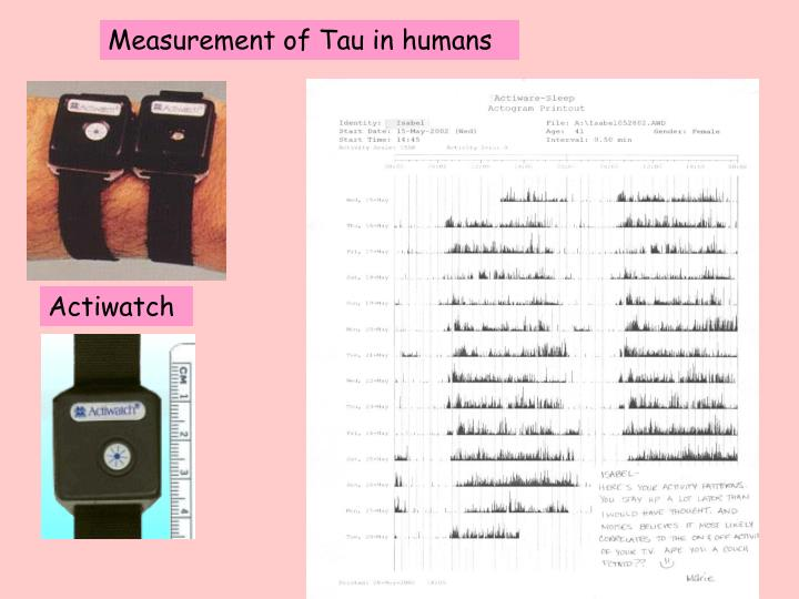 Measurement of Tau in humans