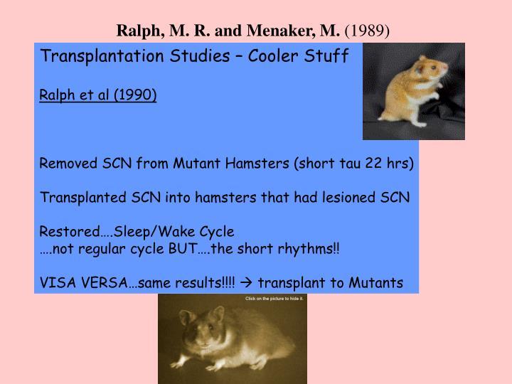 Ralph, M. R. and Menaker, M.