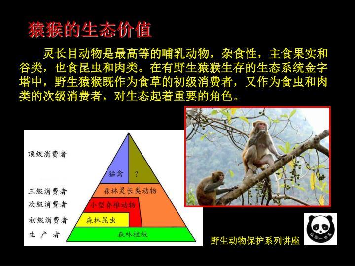 猿猴的生态价值