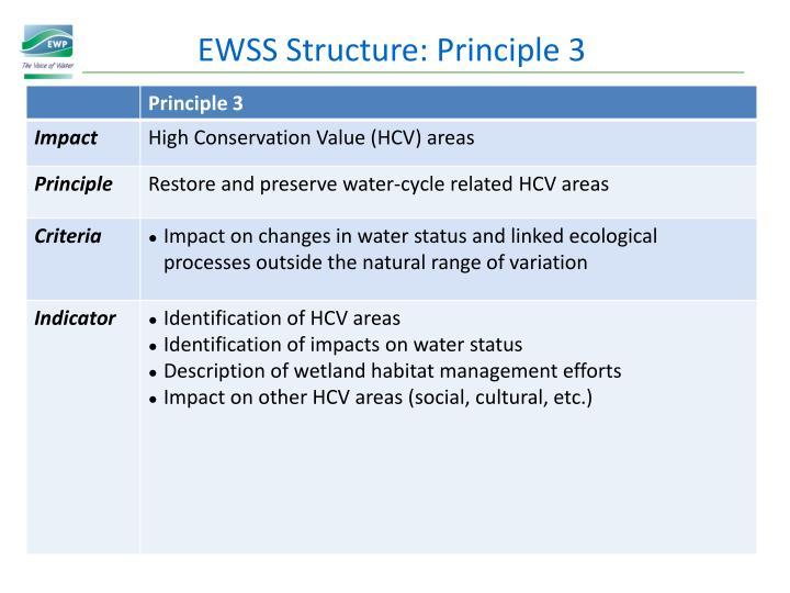 EWSS Structure: Principle 3