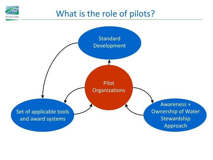What is the role of pilots?
