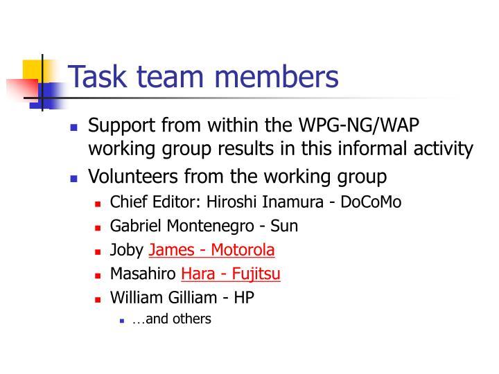 Task team members