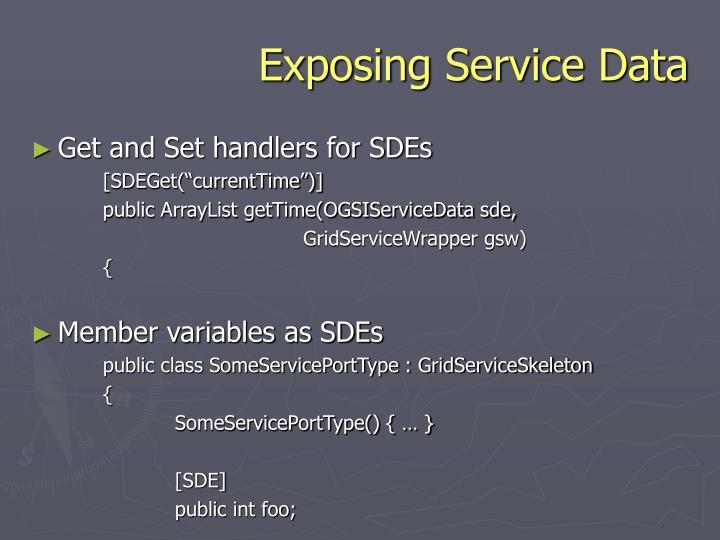 Exposing Service Data