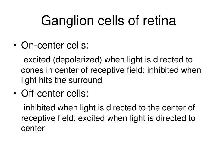 Ganglion cells of retina