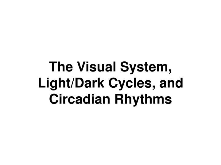 The Visual System, Light/Dark Cycles, and Circadian Rhythms