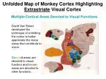 unfolded map of monkey cortex highlighting extrastriate visual cortex